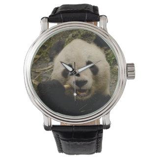 Giant panda Ailuropoda melanoleuca) Family: 5 Wristwatch