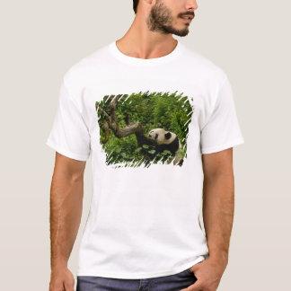 Giant panda Ailuropoda melanoleuca) Family: 8 T-Shirt