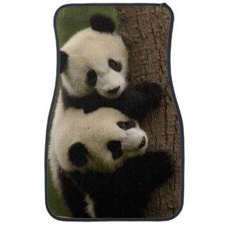 Giant panda babies (Ailuropoda melanoleuca) 2 Car Mat