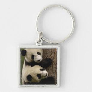Giant panda babies (Ailuropoda melanoleuca) 2 Key Ring