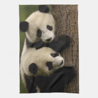 Giant panda babies (Ailuropoda melanoleuca) 2 Tea Towel