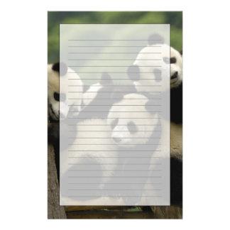 Giant panda babies Ailuropoda melanoleuca) 4 Custom Stationery