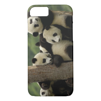 Giant panda babies Ailuropoda melanoleuca) 4 iPhone 8/7 Case