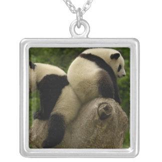 Giant panda babies (Ailuropoda melanoleuca) 4 Silver Plated Necklace
