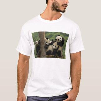 Giant panda babies Ailuropoda melanoleuca) 4 T-Shirt