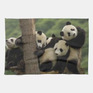 Giant panda babies Ailuropoda melanoleuca) 4 Tea Towel