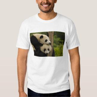 Giant panda babies Ailuropoda melanoleuca) 7 Tees