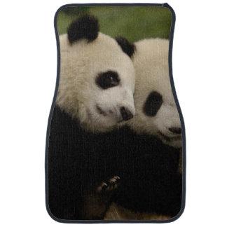Giant panda babies Ailuropoda melanoleuca) 8 Car Mat