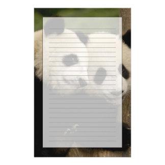 Giant panda babies Ailuropoda melanoleuca) 8 Customised Stationery