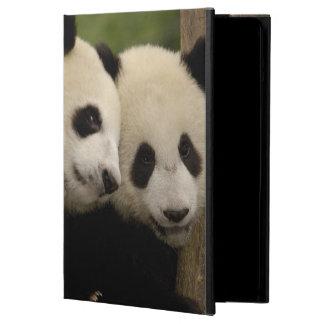 Giant panda babies Ailuropoda melanoleuca) 8 iPad Air Cover