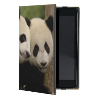 Giant panda babies Ailuropoda melanoleuca) 8 iPad Mini Case