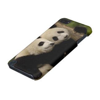 Giant panda babies Ailuropoda melanoleuca) 8 iPod Touch (5th Generation) Covers