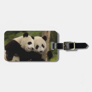 Giant panda babies Ailuropoda melanoleuca) 8 Luggage Tag