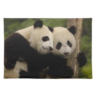 Giant panda babies Ailuropoda melanoleuca) 8 Placemat