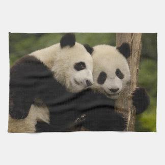 Giant panda babies Ailuropoda melanoleuca) 8 Tea Towel