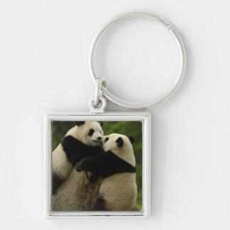 Giant panda babies (Ailuropoda melanoleuca) Silver-Colored Square Key Ring