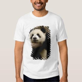 Giant panda baby Ailuropoda melanoleuca) Tshirts