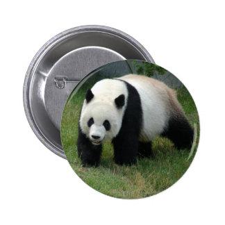 Giant Panda Bear Baby Panda Button