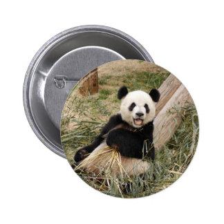 Giant Panda Bear Button