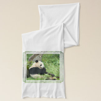 Giant Panda Bear Scarf
