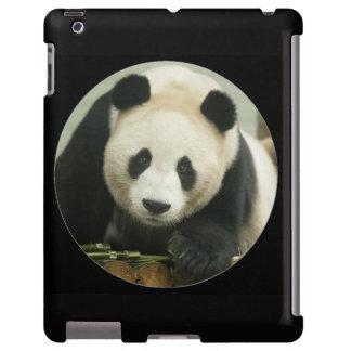 """Giant Panda"""