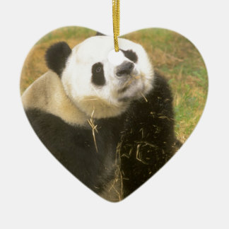 Giant Panda Ceramic Heart Decoration