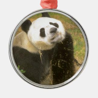 Giant Panda Christmas Ornament