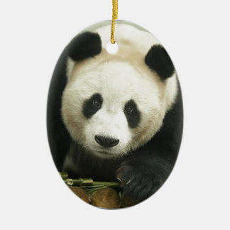 """Giant panda"" Christmas Ornament"