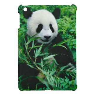 Giant Panda cub eats bamboo in the bush, Case For The iPad Mini