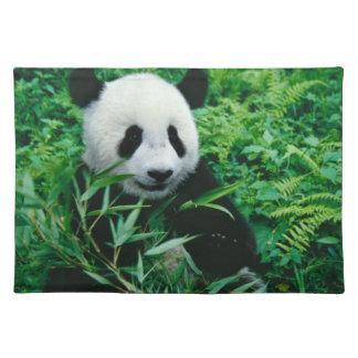 Giant Panda cub eats bamboo in the bush, Placemat