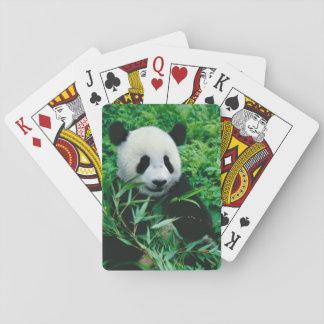 Giant Panda cub eats bamboo in the bush, Playing Cards