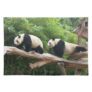 Giant panda in a wild animal zoo photography. placemat