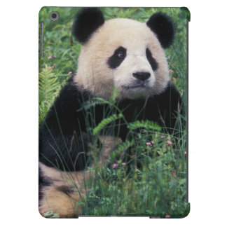 Giant panda in the grass, Wolong Valley, Sichuan iPad Air Cover