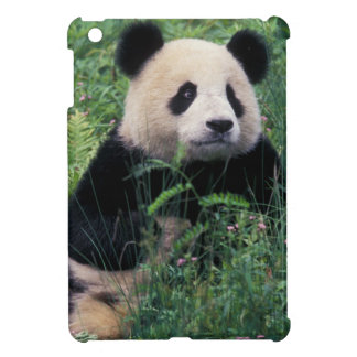Giant panda in the grass, Wolong Valley, Sichuan iPad Mini Cases