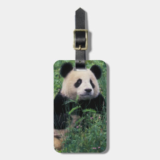 Giant panda in the grass, Wolong Valley, Sichuan Luggage Tag