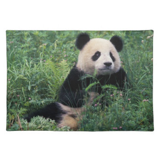 Giant panda in the grass, Wolong Valley, Sichuan Placemat