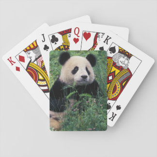 Giant panda in the grass, Wolong Valley, Sichuan Poker Deck
