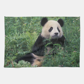 Giant panda in the grass, Wolong Valley, Sichuan Tea Towel
