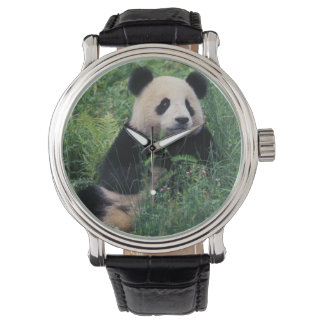 Giant panda in the grass, Wolong Valley, Sichuan Wristwatches