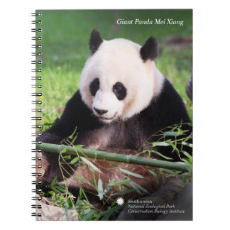 Giant Panda Mei Xiang Notebooks