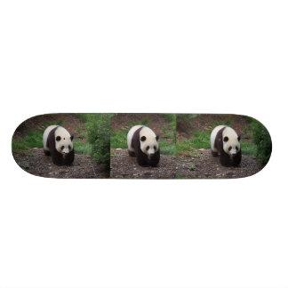 Giant Panda Photo Skateboard