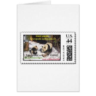 Giant panda Tai Shan and Mei Xiang Washington DC Greeting Card