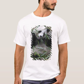 Giant pandas at the Giant Panda Protection & 2 T-Shirt