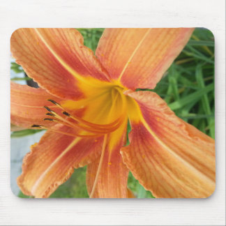 Giant Petal Bright Flower Mouse Pad