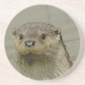 Giant River Otter  Coaster