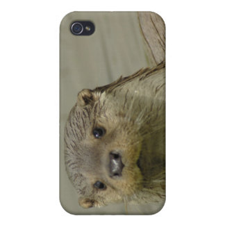 Giant River Otter iPhone 4 Case