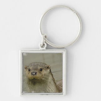 Giant River Otter Keychain