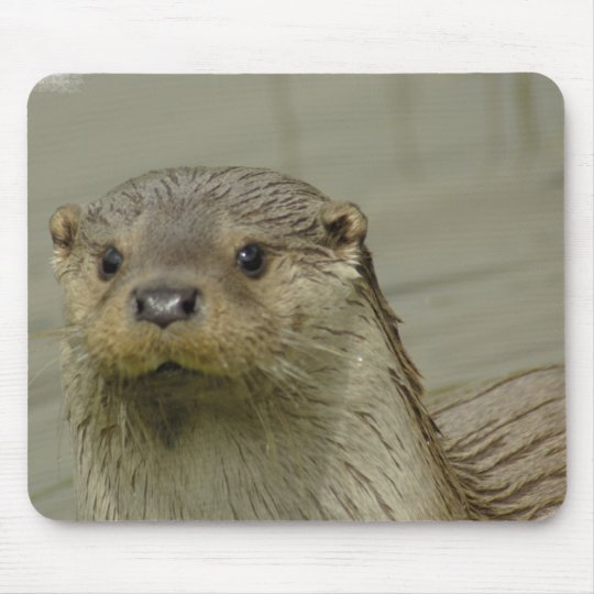 Giant River Otter Mouse Pad