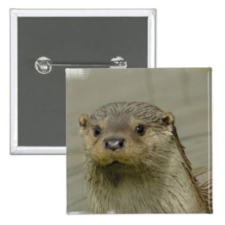 Giant River Otter Pin