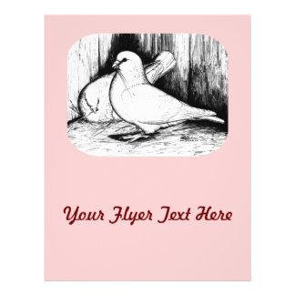 Giant Runt Pigeons Full Color Flyer